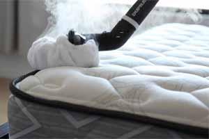 C mo eliminar chinches en casa de cama t cnicas remedios venenos - Como matar acaros del colchon ...