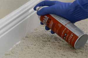 Productos químicos para eliminar chinches de cama