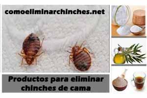 Productos para eliminar chinches de cama